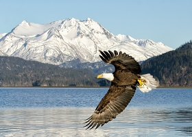 Homer, Alaska, US