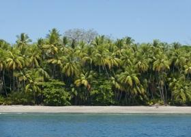 Isla Parida, Panama