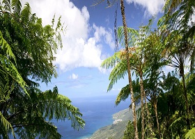 Point-a-Pitre, Guadeloupe