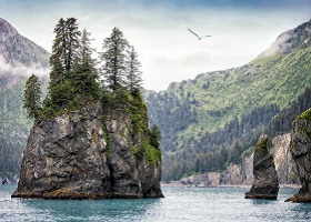 Scenic Cruising Kenai Fjords National Park, Alaska