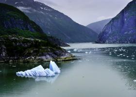 Scenic Cruising Tracy Arm / Endicott Arm, Alaska